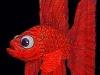 acredfish1