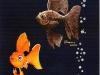 kennedycentergoldfish