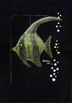 greenfishillustration